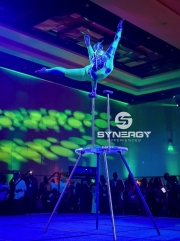 se-corporate-event-entertainment-24